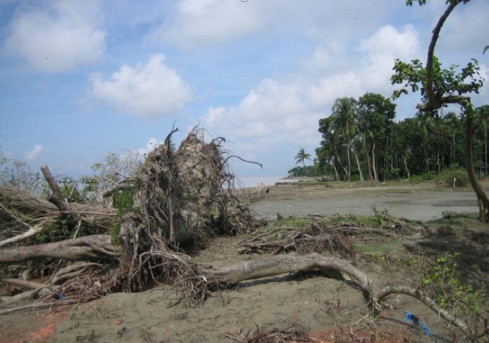 Naturkatastrophe